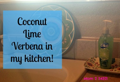 Coconutlimeverbenadialsoap